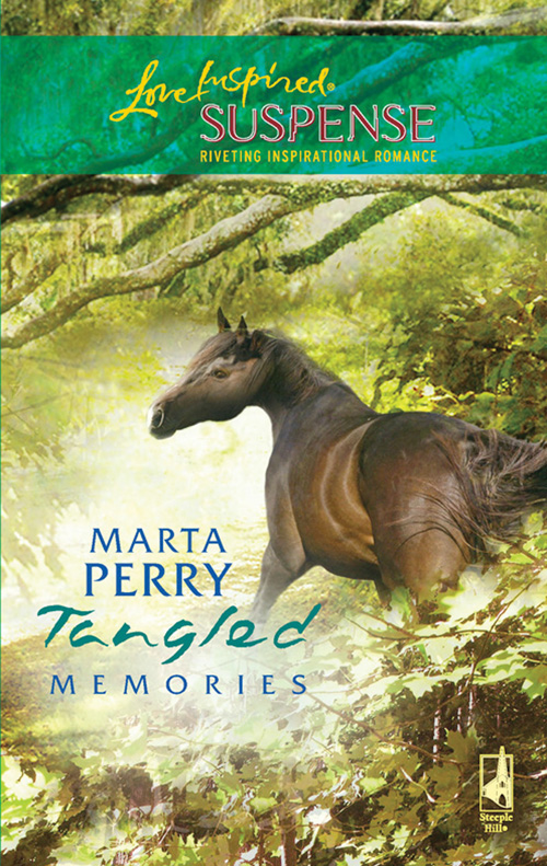 Marta Perry Tangled Memories marta perry season of secrets