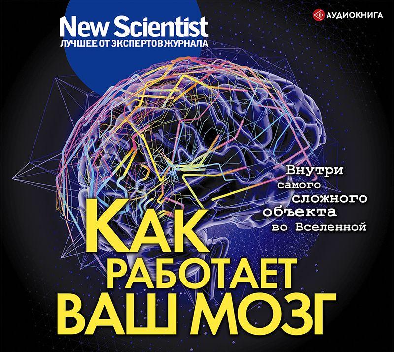 Сборник Как работает ваш мозг