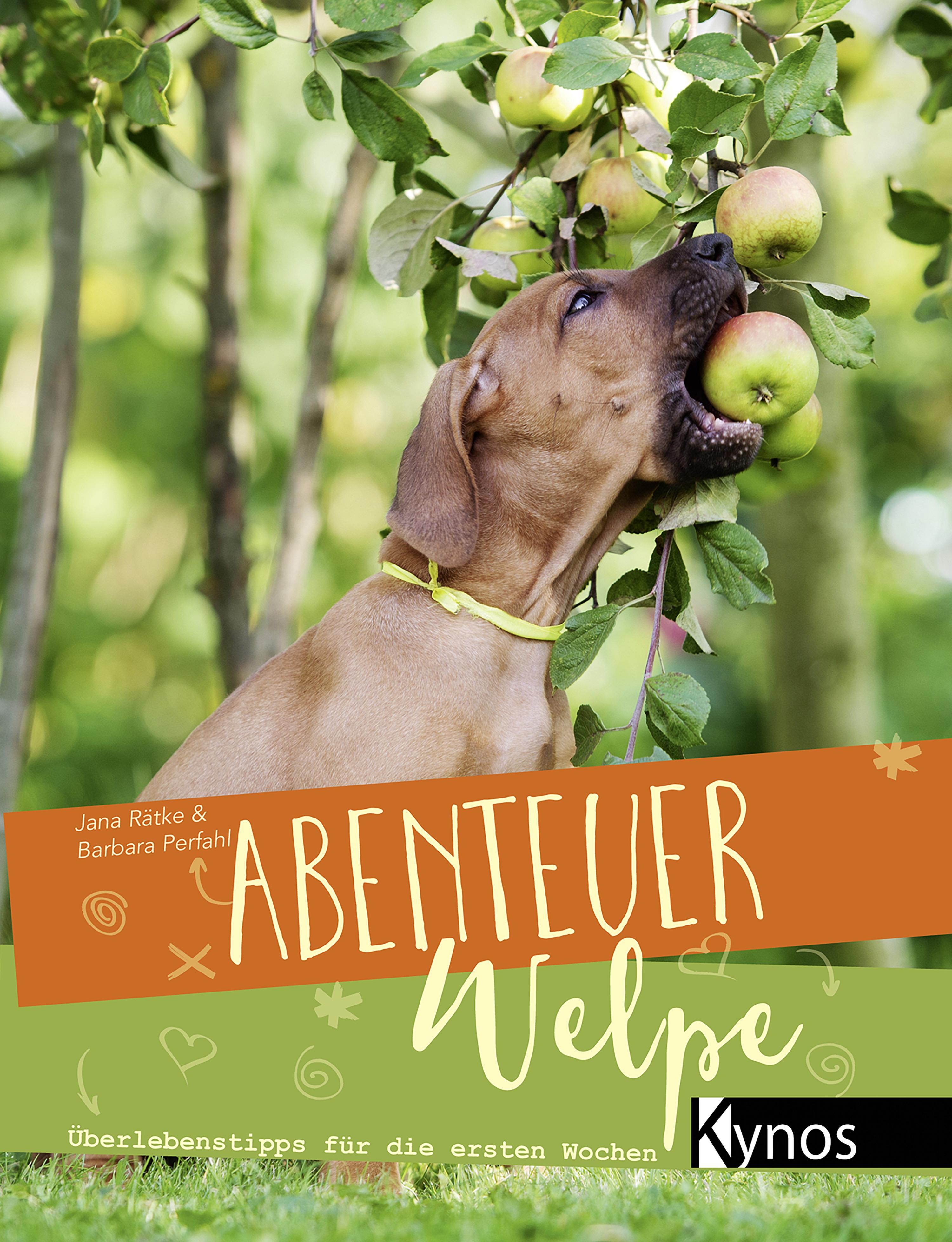 Jana Rätke Abenteuer Welpe цена 2017