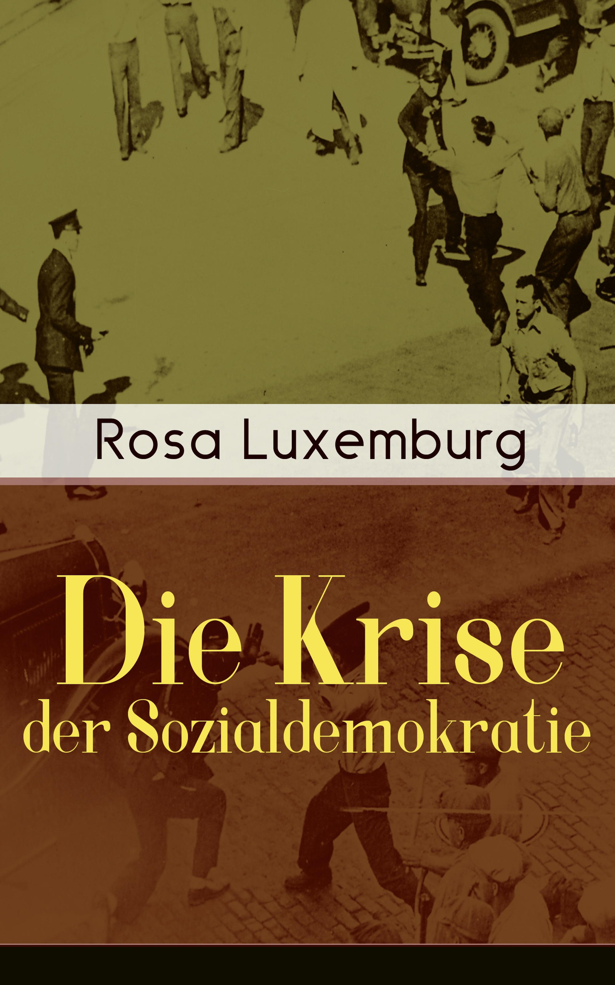 Rosa Luxemburg Die Krise der Sozialdemokratie