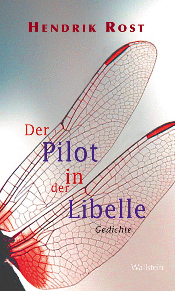 Hendrik Rost Der Pilot in der Libelle obzor kyrsa bitkoina otvesnyi rost 22 11 2017