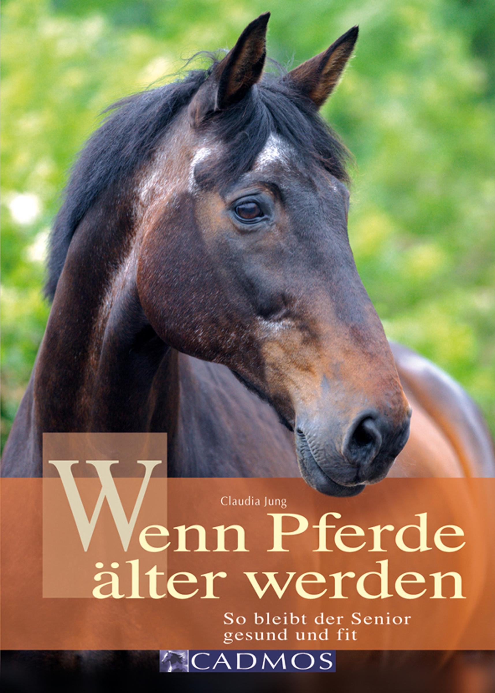 Claudia Jung Wenn Pferde älter werden