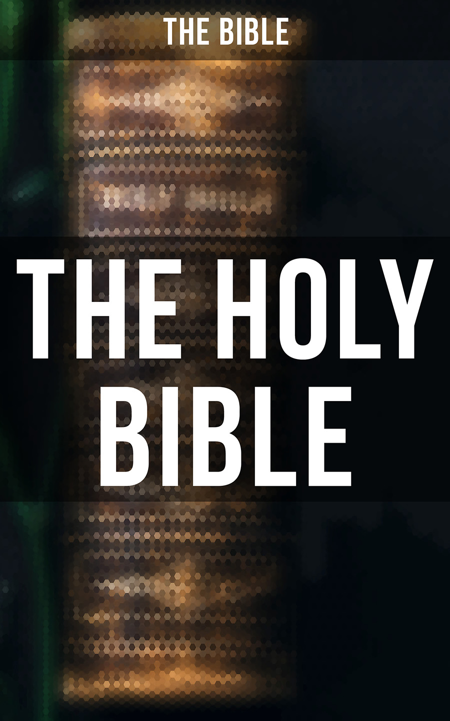 The Bible The Holy Bible leah vintila the seed within bible study
