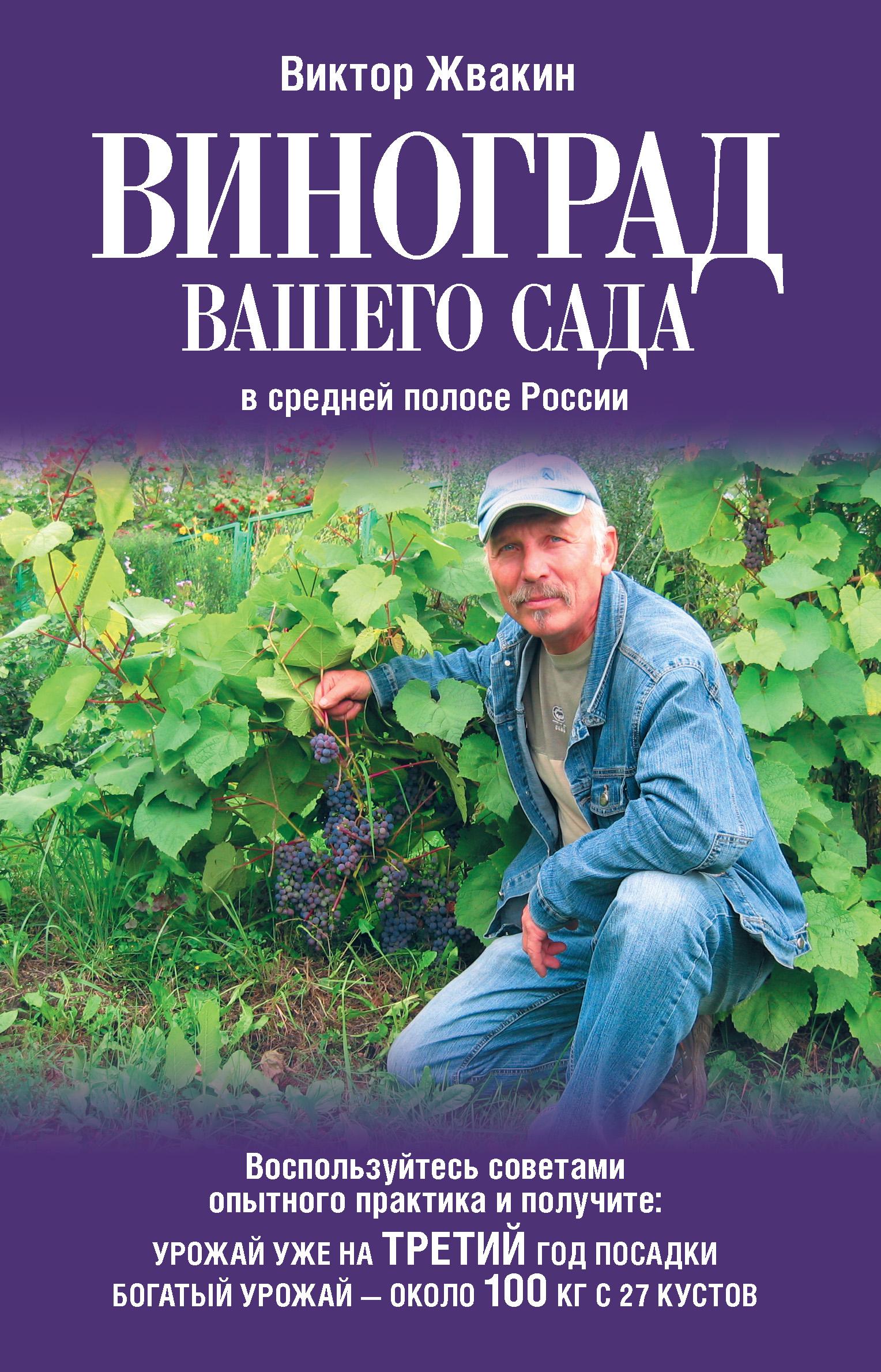 Фото - Виктор Жвакин Виноград вашего сада в средней полосе России виноград секреты виноградарей севера и юга россии