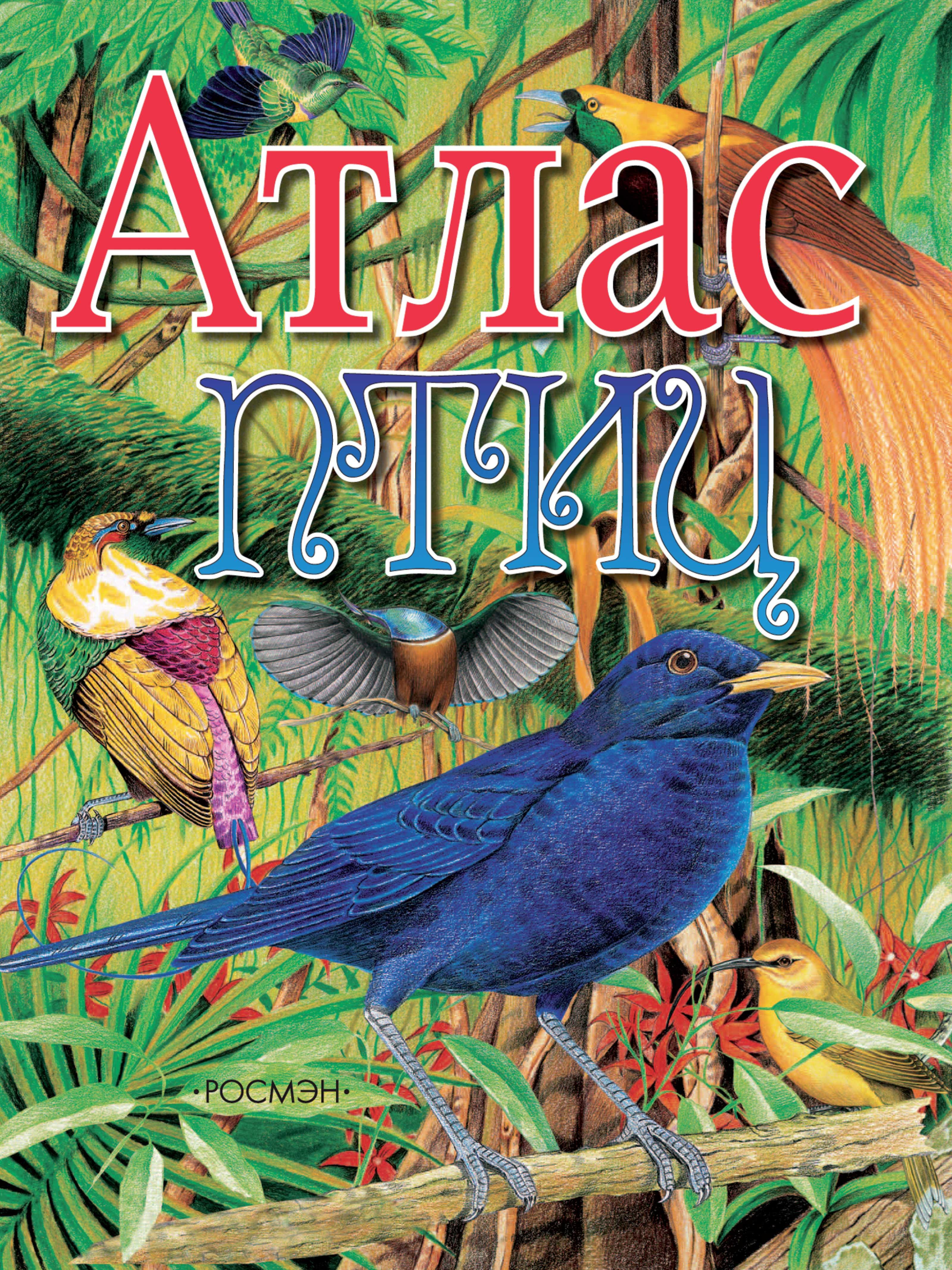 Атлас птиц