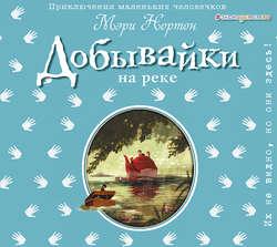 Нортон Мэри Добывайки на реке (ил. И. Панкова) (#3) обложка