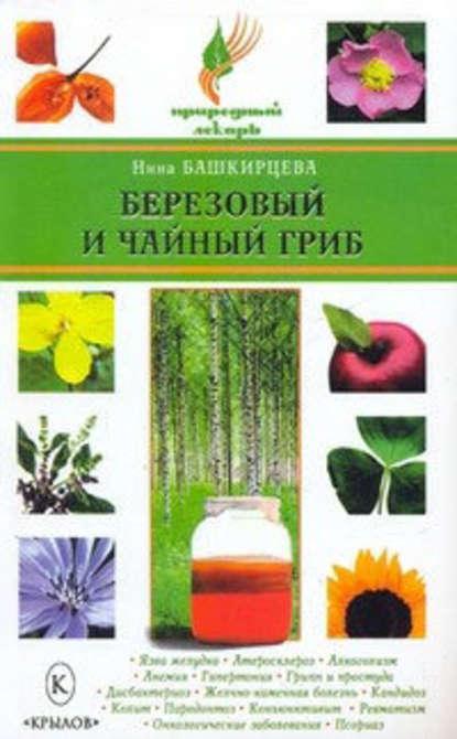 Нина Башкирцева Березовый и чайный гриб чага гриб сенсация
