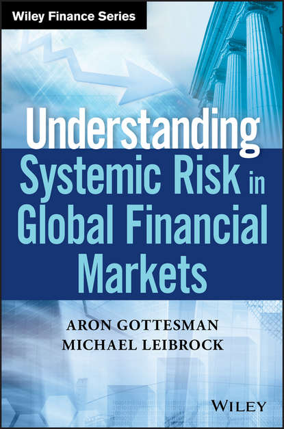 Aron Gottesman Understanding Systemic Risk in Global Financial Markets systemic shifts in sociology