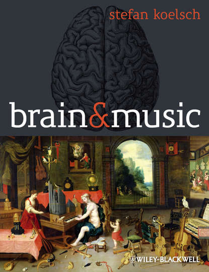 Stefan Koelsch Brain and Music sourcebook for research in music