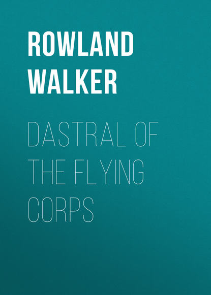 Фото - Rowland Walker Dastral of the Flying Corps rowland helen the sayings of mrs solomon