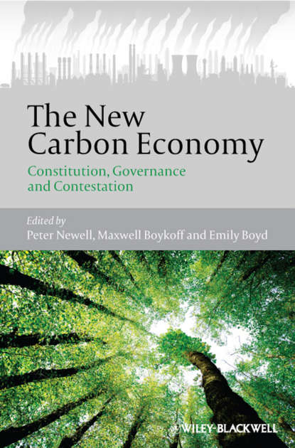 Peter Newell The New Carbon Economy. Constitution, Governance and Contestation the shadow economy