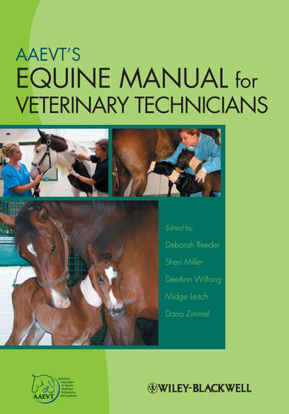 Группа авторов AAEVT's Equine Manual for Veterinary Technicians john dascanio equine reproductive procedures