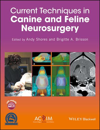 Группа авторов Current Techniques in Canine and Feline Neurosurgery séguin bernard veterinary surgical oncology