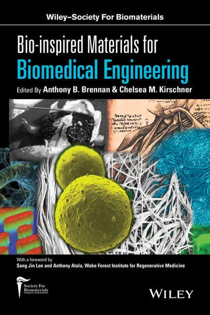 Фото - Группа авторов Bio-inspired Materials for Biomedical Engineering haim azhari basics of biomedical ultrasound for engineers