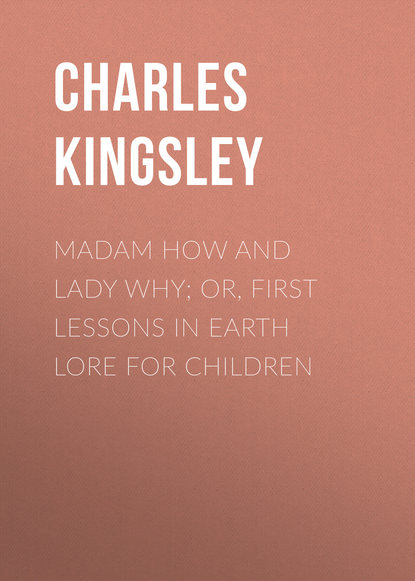 Charles Kingsley Madam How and Lady Why; Or, First Lessons in Earth Lore for Children