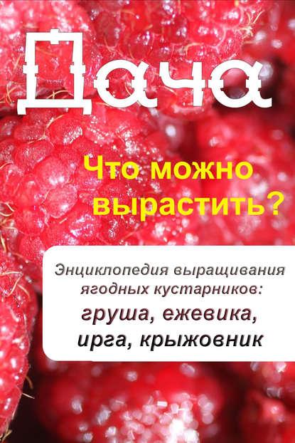 Группа авторов / Что можно вырастить? Энциклопедия выращивания ягодных кустарников: груша, ежевика, ирга, крыжовник