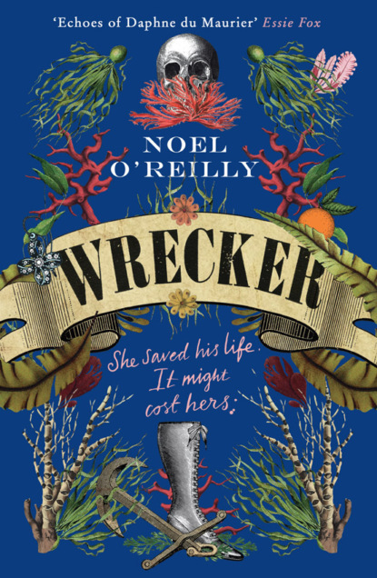 Wrecker: A gripping debut for fans of Poldark and the Essex Serpent