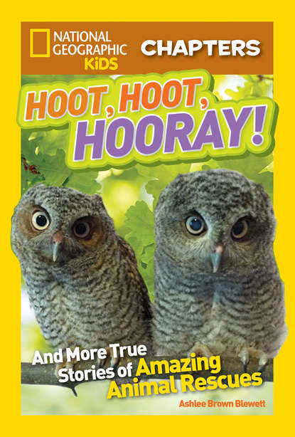 Ashlee Blewett Brown National Geographic Kids Chapters: Hoot, Hoot, Hooray!: And More True Stories of Amazing Animal Rescues недорого