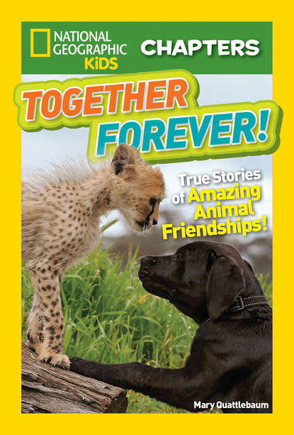 Mary Quattlebaum National Geographic Kids Chapters: Together Forever: True Stories of Amazing Animal Friendships! недорого