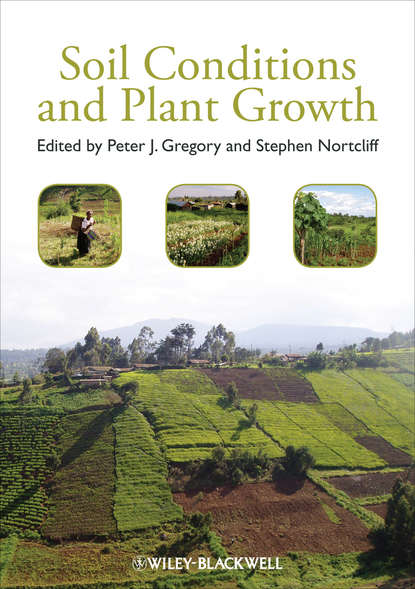 Stephen Nortcliff Soil Conditions and Plant Growth richard barras building cycles growth and instability