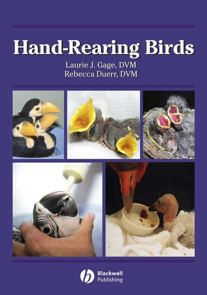 Rebecca Duerr S. Hand-Rearing Birds