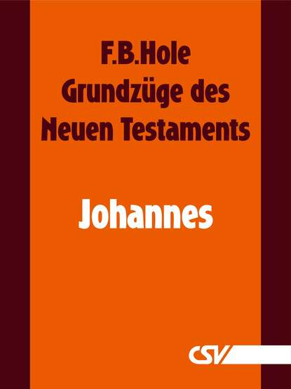 F. B. Hole Grundzüge des Neuen Testaments - Johannes danuta mostwin testaments