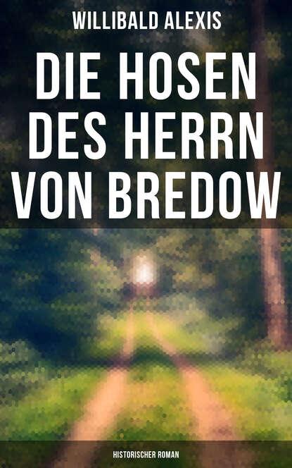 Alexis Willibald Die Hosen des Herrn von Bredow: Historischer Roman die geschichte von herrn sommer