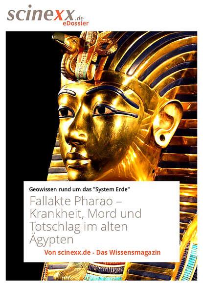 Dieter Lohmann Fallakte Pharao недорого