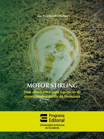 Juan Ricardo Vidal Medina Motor stirling: uma alternativa para a geração de eletricidade a partir da biomassa