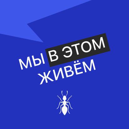 Творческий коллектив Mojomedia Выпуск № 50 s05 — Дерево - херерево