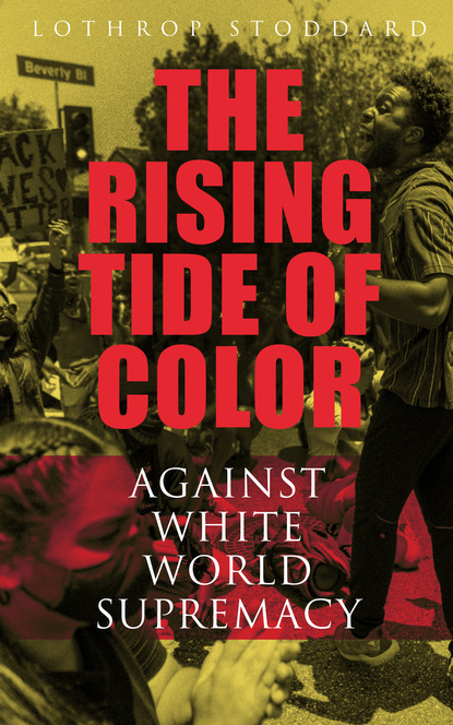 Lothrop Stoddard The Rising Tide of Color Against White World-Supremacy dave oliver against the tide