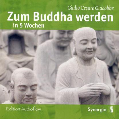 Giulio Cesare Giacobbe Zum Buddha werden in 5 Wochen, Episode 1 handel giovanni antonini giulio cesare blu ray