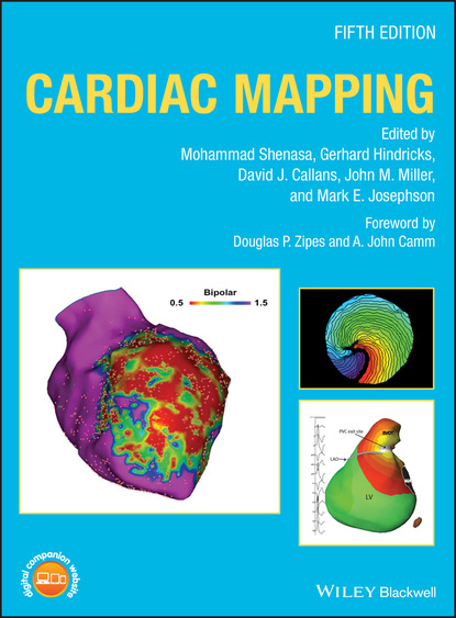 Фото - Группа авторов Cardiac Mapping группа авторов триодь постная