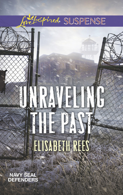Фото - Elisabeth Rees Unraveling The Past rees celia the tear jar