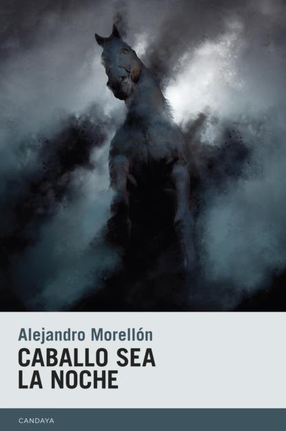Фото - Alejandro Morellón Caballo sea la noche loafers el caballo loafers