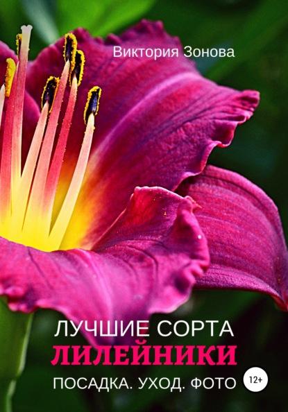 Виктория Зонова Лилейники. Лучшие сорта виктория зонова клематисы лучшие сорта