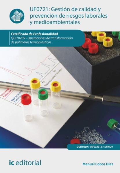 Manuel Cobos Díaz Gestión de calidad y prevención de riesgos laborales y medioambientales. QUIT0209 недорого
