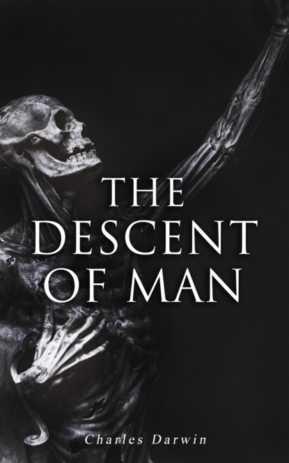 Чарльз Дарвин The Descent of Man weismann august studies in the theory of descent volume i