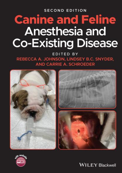 Группа авторов Canine and Feline Anesthesia and Co-Existing Disease группа авторов depression and heart disease