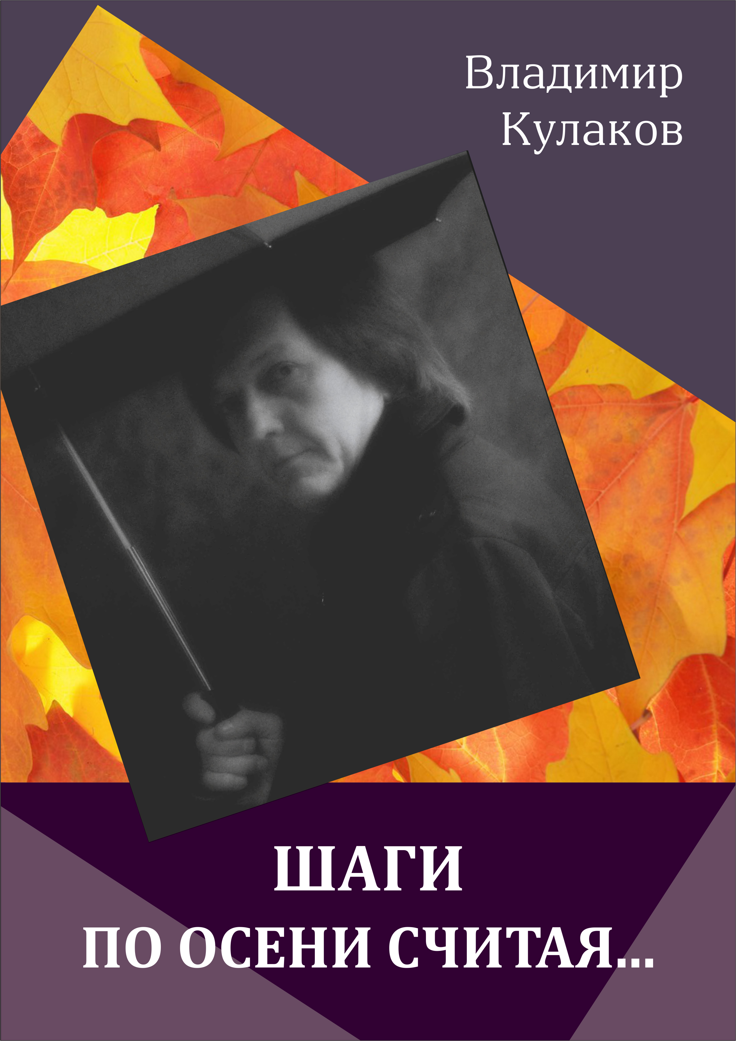 Шаги по осени считая… (сборник)