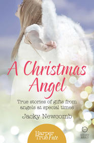A Christmas Angel: True Stories of Gifts from Angels at Special Times