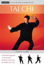 Tai Chi: A practical approach to the ancient Chinese movement for health and well-being