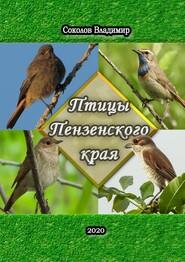 Птицы Пензенскогокрая. Или моя первая фотовыставка