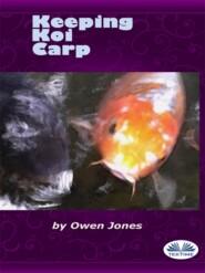 Keeping Koi Carp
