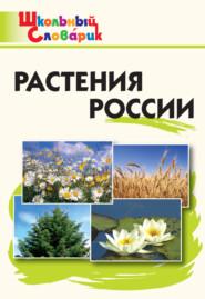 Растения России. Начальная школа