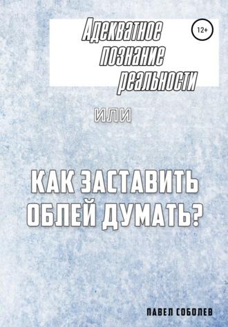 Адекватное познание реальности, или Как заставить облей думать? Павел Соболев