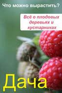 Что можно вырастить? Всё о плодовых деревьях и кустарниках