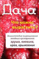 Что можно вырастить? Энциклопедия выращивания ягодных кустарников: груша, ежевика, ирга, крыжовник