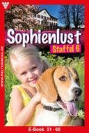 Sophienlust Staffel 6 – Familienroman