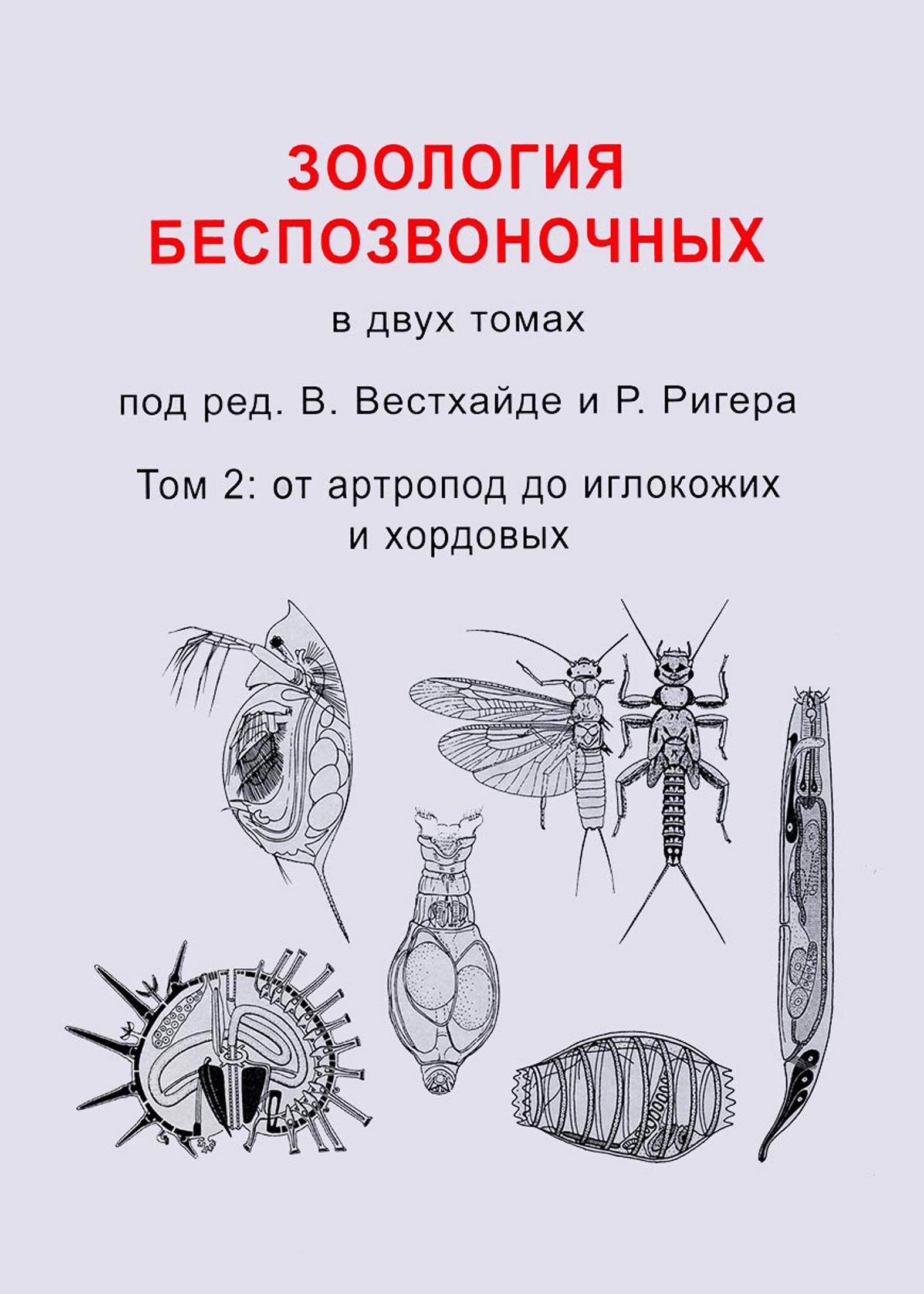 Зоология беспозвоночных. Том 2. От артропод до иглокожих и хордовых